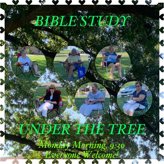 St. Barbara Ladies Guild Harrison City Bible Study under the tree